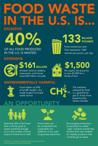 Food Waste Infographic shareable